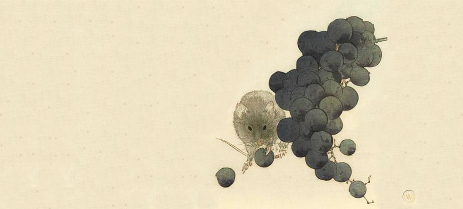 Watanabe Shōtei aka Watanabe Seitei (Japanese 1851–1918) Mouse and Grapes, approx. 1910