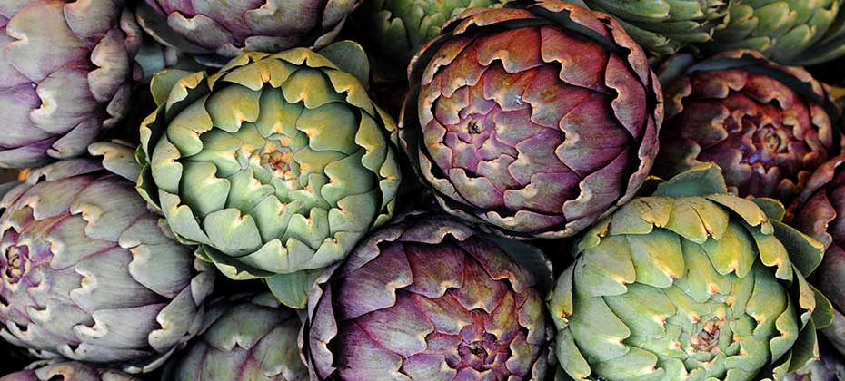 Varied artichokes
